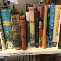 All Shape and Sizes - The Bookshops of Hythe